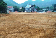 Hà Nội: Chủ tịch UBND huyện Thạch Thất chỉ đạo xử lý nghiêm vụ nhà quan xã san lấp trái phép hàng trăm m2 đất ruộng