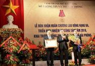 Sở Thông tin &Truyền thông Hải Phòng: Đón nhận Huân chương Lao động hạng ba