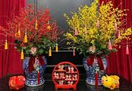 Nhà giàu Việt chi chục triệu mua đào đông đỏ, mai Mỹ chơi Tết