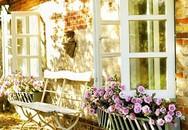 10 ví dụ về ngôi nhà tranh cho thấy nhà đẹp như cổ tích là hoàn toàn có thật