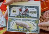 Săn lùng tiền lì xì in hình con heo
