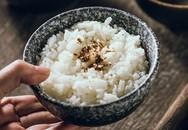 """GIẢI OAN chính thức cho lời đồn """"cơm là thủ phạm gây béo phì, tiểu đường"""" và gợi ý của chuyên gia để làm sao ăn cơm mà không béo"""