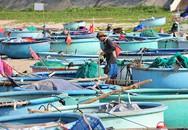 Khám phá làng chài chỉ dùng thuyền thúng để ra khơi