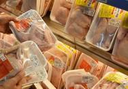 Gà Mỹ giá 19.800 đồng/kg ồ ạt về Việt Nam