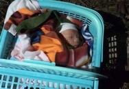 Bé trai 20 ngày tuổi bị bỏ rơi ven đường