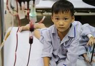 Rớt nước mắt câu trả lời của cậu bé sống nhờ máu người lạ khi mẹ hỏi: 'Muốn có em trai hay gái'?