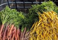 Người đàn ông trồng cả khu vườn hữu cơ để bảo vệ sức khỏe sau khi được chẩn đoán ung thư tuyến giáp