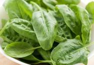 7 thực phẩm giúp ngăn ngừa ung thư tụy bạn cần nhớ