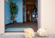Virus lạ lây lan cực nhanh, Mỹ đóng cửa 46 trường học