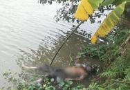 Vừa đi vừa nhảy múa, người đàn ông trượt chân ngã xuống sông tử vong