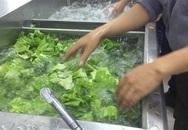 Rửa rau dưới vòi nước chảy hay trong chậu mới sạch? Câu trả lời bất ngờ từ chuyên gia
