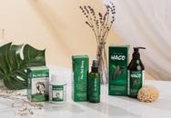 """3 lý do nên lựa chọn bộ sản phẩm Tóc Haco để có một mái tóc """"không tuổi"""""""
