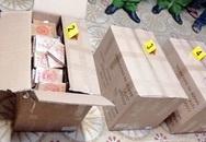 Bắt giữ 446 bánh heroin từ Campuchia về Việt Nam