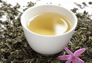Lợi ích sức khỏe tuyệt vời của trà trắng ít người biết