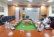 Xuất hiện thông tin sai sự thật về bệnh dịch tả lợn châu Phi ở Quảng Ninh