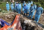 Quảng Ninh: Người dân chủ quan, tự đem lợn tiêu hủy tại vườn nhà