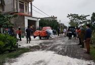 Nam Định: Tiêu hủy 80 con lợn dính dịch tả lợn châu Phi