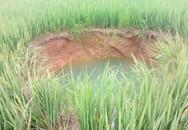 Kỳ lạ 'hố tử thần' nước xanh ngắt chình ình giữa ruộng lúa