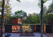 Ấn tượng với ngôi nhà bằng gỗ và kính của cặp vợ chồng thiết kế đồ họa
