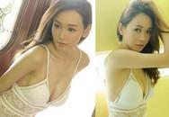 Những Hoa hậu, á hậu nổi tiếng Hồng Kông mất tất cả vì clip nóng trên taxi, bê bối tình ái