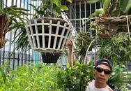 Khu vườn sân thượng xanh mướt rau sạch của người đàn ông chăm chỉ trồng cho gia đình ở Sài Gòn