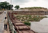 Hàng trăm xác lợn chết bốc mùi trên sông ở Hải Phòng