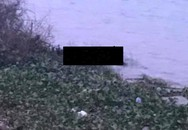 Phát hiện thi thể người phụ nữ ở Hải Dương dưới sông Thái Bình nghi tự tử