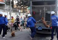Các vụ chó cắn chết người, chó thả rông, không đeo rọ mõm: Các mức xử phạt hiện nay và xử lý hình sự như thế nào?