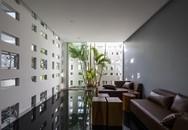 Căn nhà hướng Tây mát rượi, tràn đầy màu xanh ở Nha Trang