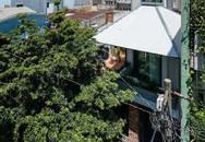 """""""Ngôi nhà ô"""" không ngại nắng mưa ở TPHCM khiến ai cũng phát thèm"""