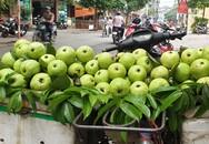 """Vì sao trái cây vào vụ, giá vẫn """"phi nước đại""""?"""