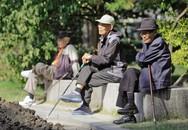 """Mức sinh """"lao dốc"""" của Hàn Quốc và bài học kinh nghiệm ở Việt Nam"""