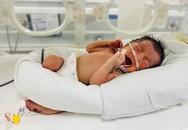 Phú Thọ: Cứu sống bé sơ sinh bị bỏ rơi trong tình trạng nguy kịch