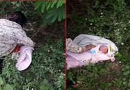 Bé sơ sinh bị bỏ rơi trong rừng ở Sơn La đã có gia đình xin nuôi