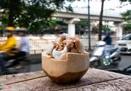 Bán dạo kem dừa Thái Lan, kiếm tiền triệu mỗi ngày ở Hà Nội