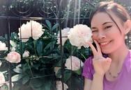 """4 năm """"tự tay làm hết"""", mẹ Mỹ gốc Việt biến mảnh đất trống thành vườn đẹp như công viên"""