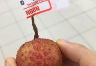 'Thánh lầy' vào siêu thị mua đúng 1 quả vải với giá 1 nghìn khiến MXH dậy sóng