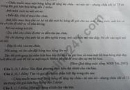 Xôn xao đề thi vào lớp 10 môn Ngữ Văn Quảng Bình giống y hệt đề kiểm tra học kỳ 2 lớp 9 trước đó không lâu