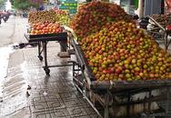 Chôm chôm siêu rẻ, giá 5.000 đồng/kg tại vườn