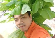 Với kinh nghiệm 10 năm trồng rau bằng phương pháp khí canh, sân thượng nhỏ của chàng trai trẻ ở Sài Gòn thu hoạch cả tạ rau mỗi tháng