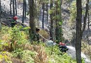 Hàng trăm cảnh sát, bộ đội chữa cháy rừng thông ở Huế