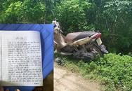 Nữ giáo viên mất tích, để lại tâm thư tự tử ở Tuyên Quang bất ngờ… gọi điện về nhà