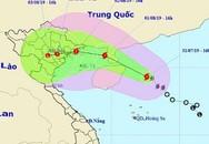 Bộ Giáo dục và Đào tạo yêu cầu toàn ngành phòng, chống cơn bão số 3