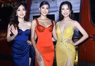 Tài tử, giai nhân dập dìu tại chung kết phía Bắc Hoa hậu Thế giới Việt Nam