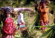 Lạ lùng những ngôi làng của phụ nữ không có tử cung