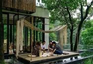 Cô gái xây nhà trên núi đưa cha mẹ lên sống ẩn dật