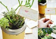 """14 gợi ý """"đắt giá"""" để bạn có thể tự tạo một khu vườn mini đẹp ấn tượng"""