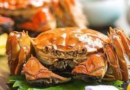 Cua lông 2 lạng giá gần 1 triệu vẫn không làm chùn bước dân sành ăn Việt