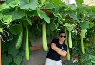 Vườn rau trái hương vị quê nhà của chủ tiệm nail gốc Việt