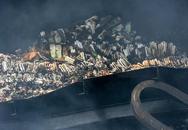 Công ty Rạng Đông lên tiếng về nghi vấn hoá chất gây hại phát tán sau vụ cháy kinh hoàng